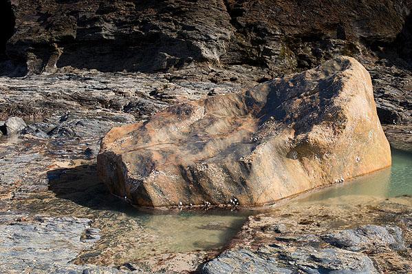 Glacial Erratic - Pargodonnel Rocks (S16)
