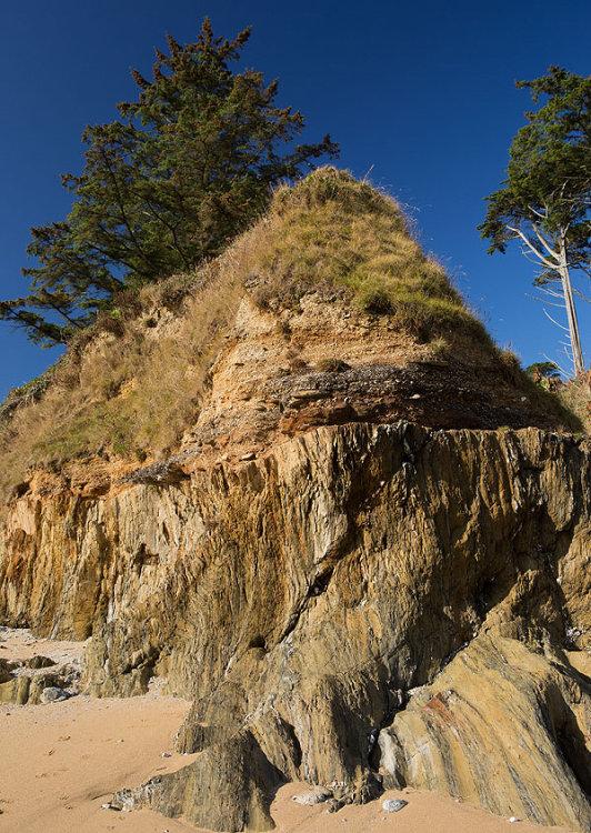 Raised Beach - Bream Cove (S20)