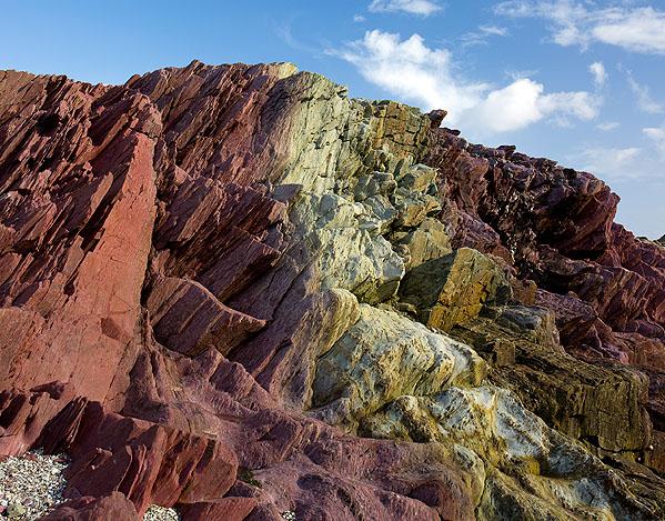 Devonian Slates - Talland Bay (S25)