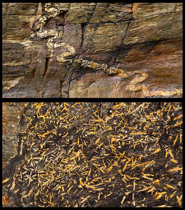 Granite Veins / Andalusite - Rinsey Cove (S16)