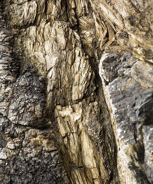 Asbestiform Mineral Vein - Kennack Sands (S18)