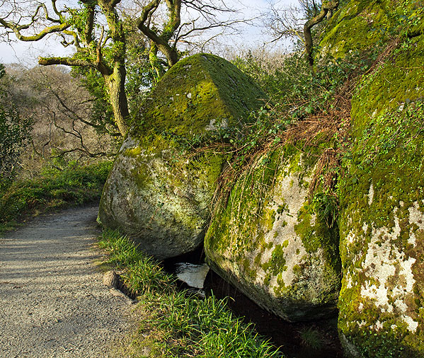 Luxulyan Valley - Granite Boulder