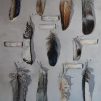Feather Collection ll
