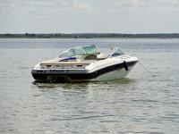 Six Foot & Pumpkin Speedboat