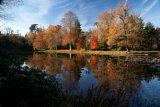 Claremont Autumn