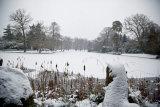 Claremont winter