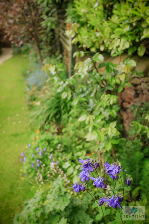 A Small Town Garden, Cheshire