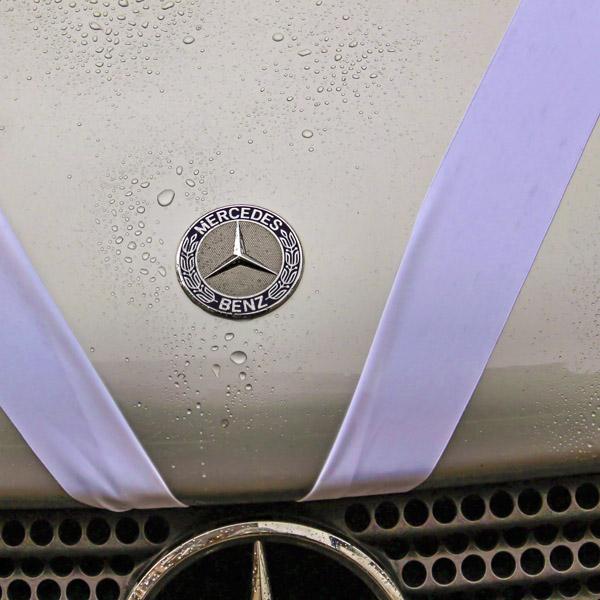 Wedding Car & Ribbon
