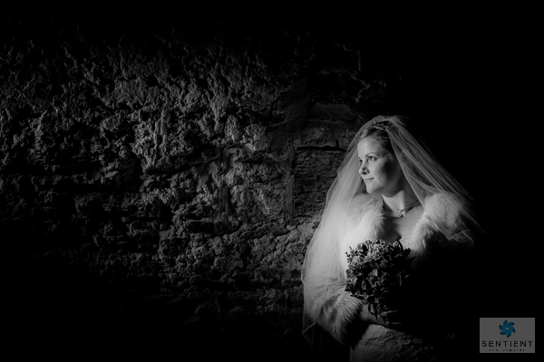 Mono Bride Barn Profile