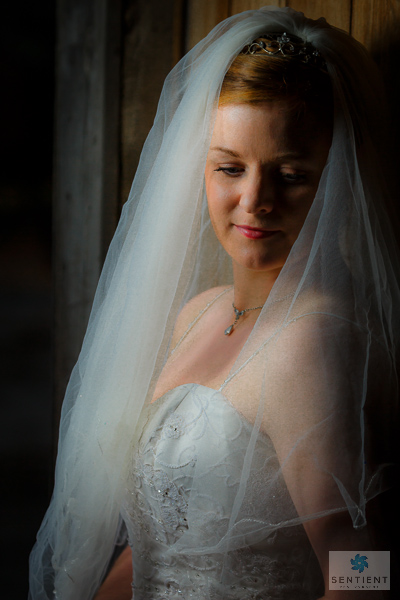Bride Pre-Wedding Portrait