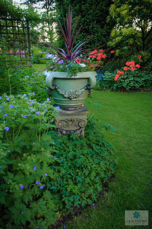 Sun House Garden - Bramhal