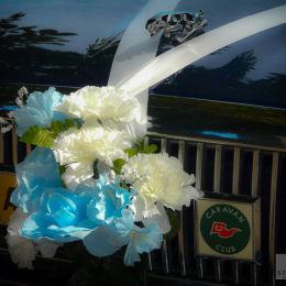 Wedding Carnations