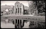 Valley Crucis Abbey 2