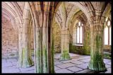 Valle Crucis Abbey 1