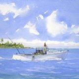 North Shore Bermuda