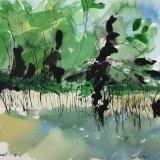 Lac du Der, France:  ink, watercolour, 24 x 28 cm