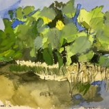 Lac du Der, France (2):  ink, watercolour, 24 x 28 cm