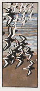 Oystercatchers woodcut
