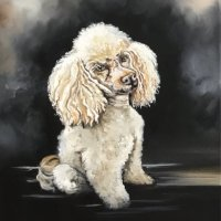 Toy poodle commission