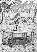 Editorial illustration - Fox fun !