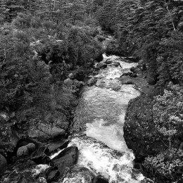 Tongariro Stream 2