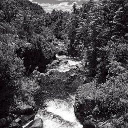 Tongariro Stream 3