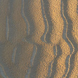 Sand ripples in sun and shade