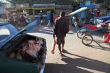 Madagascar Street Butcher