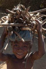 Madagascar Firewood Boy
