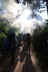 Madagascar Trekking into the Light