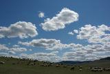 Mongolia Big Sky