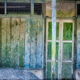 Borneo Abstract 4