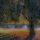 Broomfield Dawn