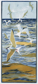 Fishing Terns £95 EDITION SOLD OUT