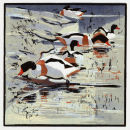 Shelducks £95 unframed