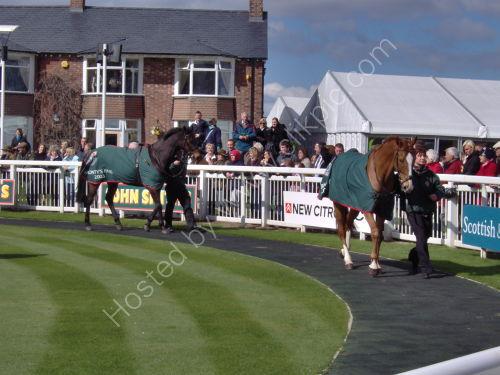 Parade ring - 2008