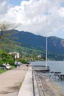 Peaceful lakeside scene