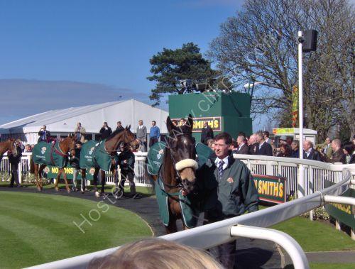 Parade ring 2009