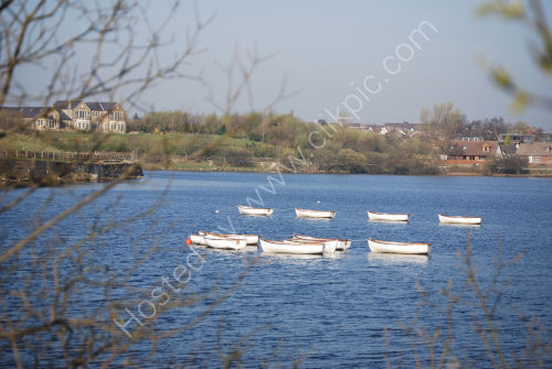 White rowing boats ...
