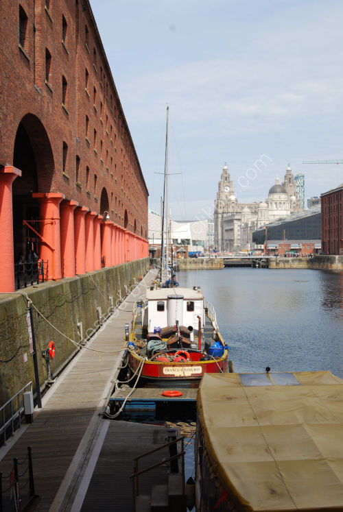 Albert Dock and the Liver..