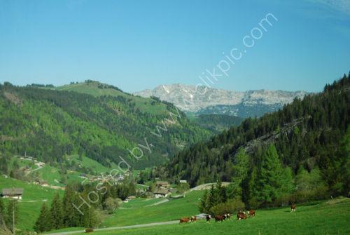 Green Alpine valley