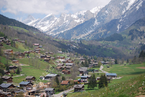 Alpine pastures and wooden homes