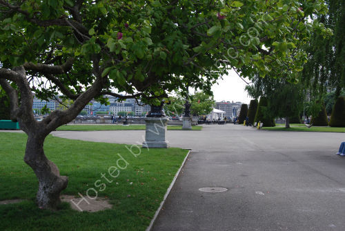 Tree lined promenade