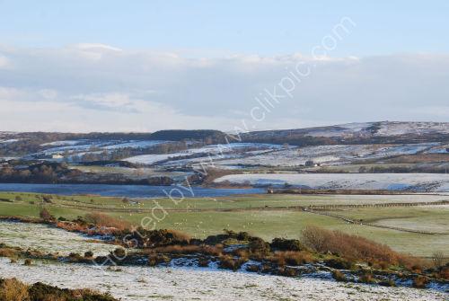 Fields of Bute in Winter
