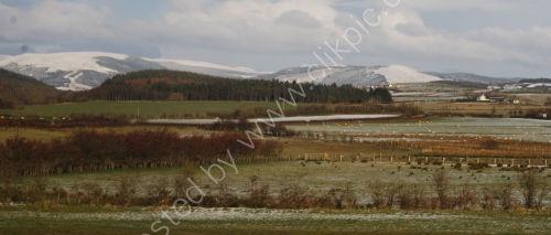 Winter scene on Bute in winter
