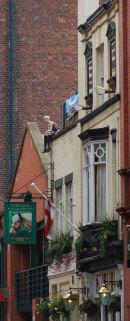 'Figure' sat on roof of Pub