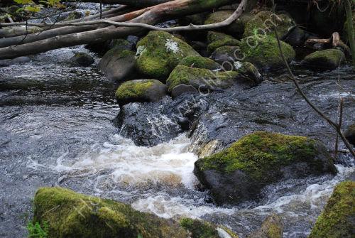 Stream running through the valley