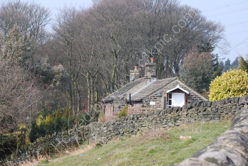 Cottage on the edge of the wood