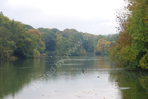Autumn reflections at the Country park