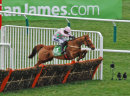 """Annie Power"" jumping the last at Cheltenham"